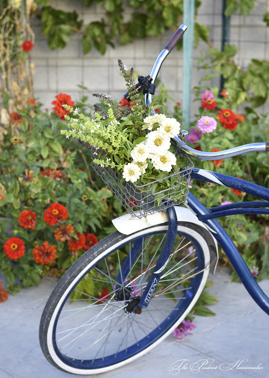 October Bicycle and Flowers The Prudent Homemaker