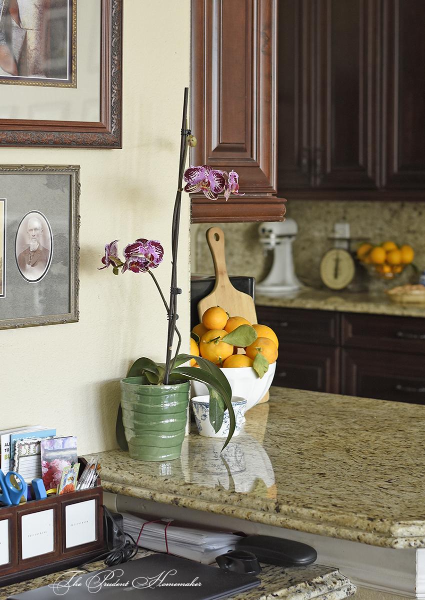 Spring Home Tour Desk The Prudent Homemaker