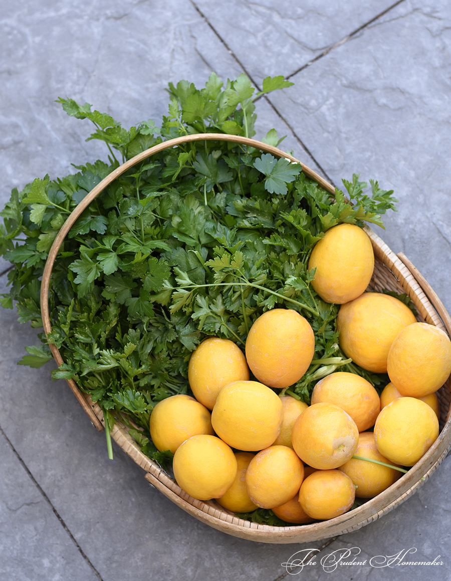 Lemons and Parsley The Prudent Homemaker
