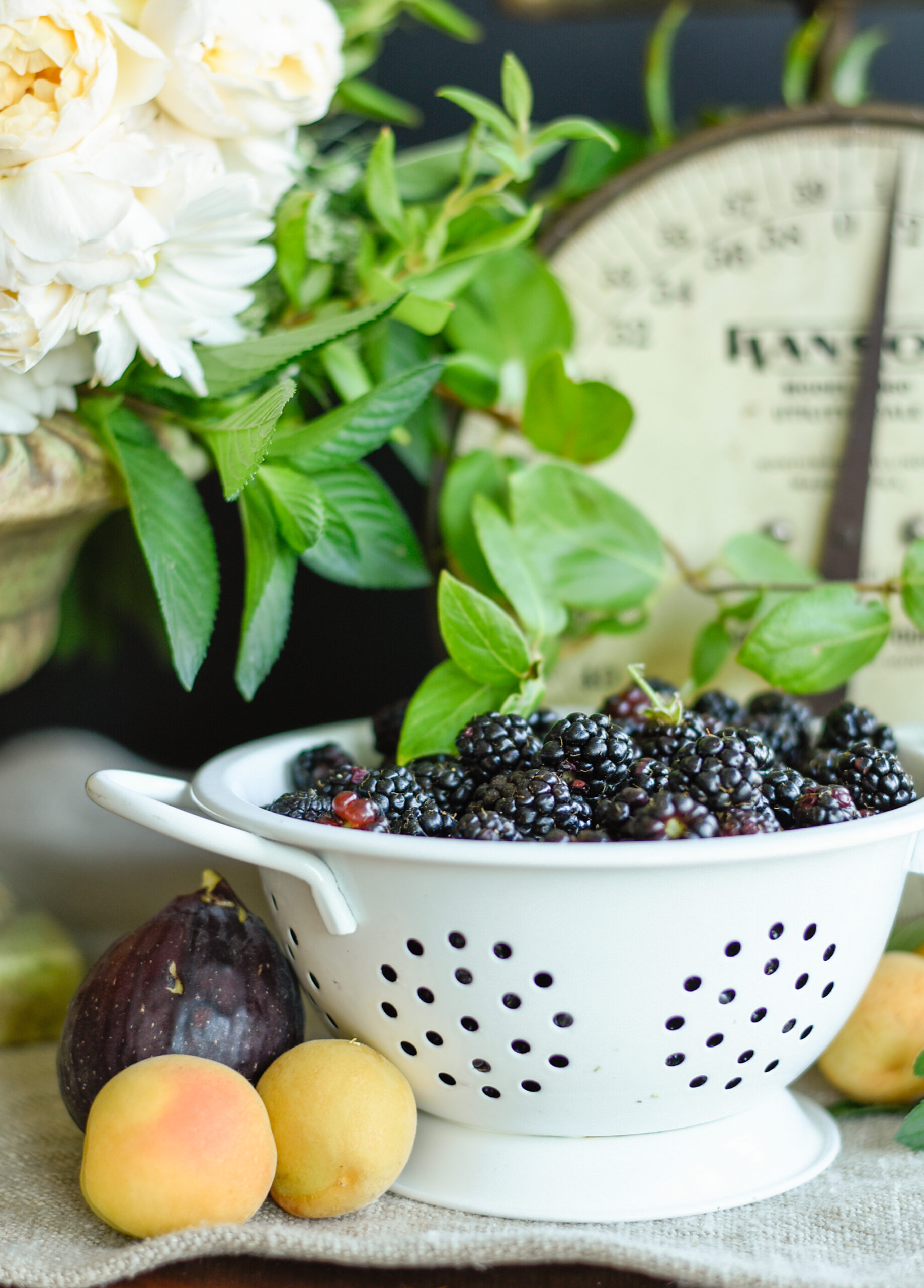 Blackberries The Prudent Homemaker